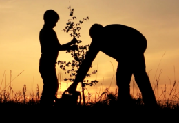 Effective Church Planters | On Missions